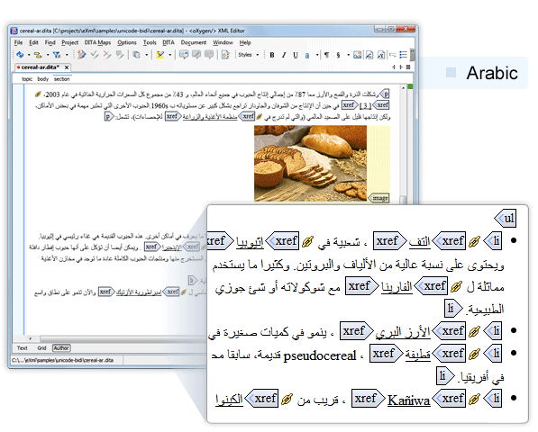 Arabic Support in oXygen XML Author