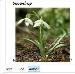Images in Author Mode