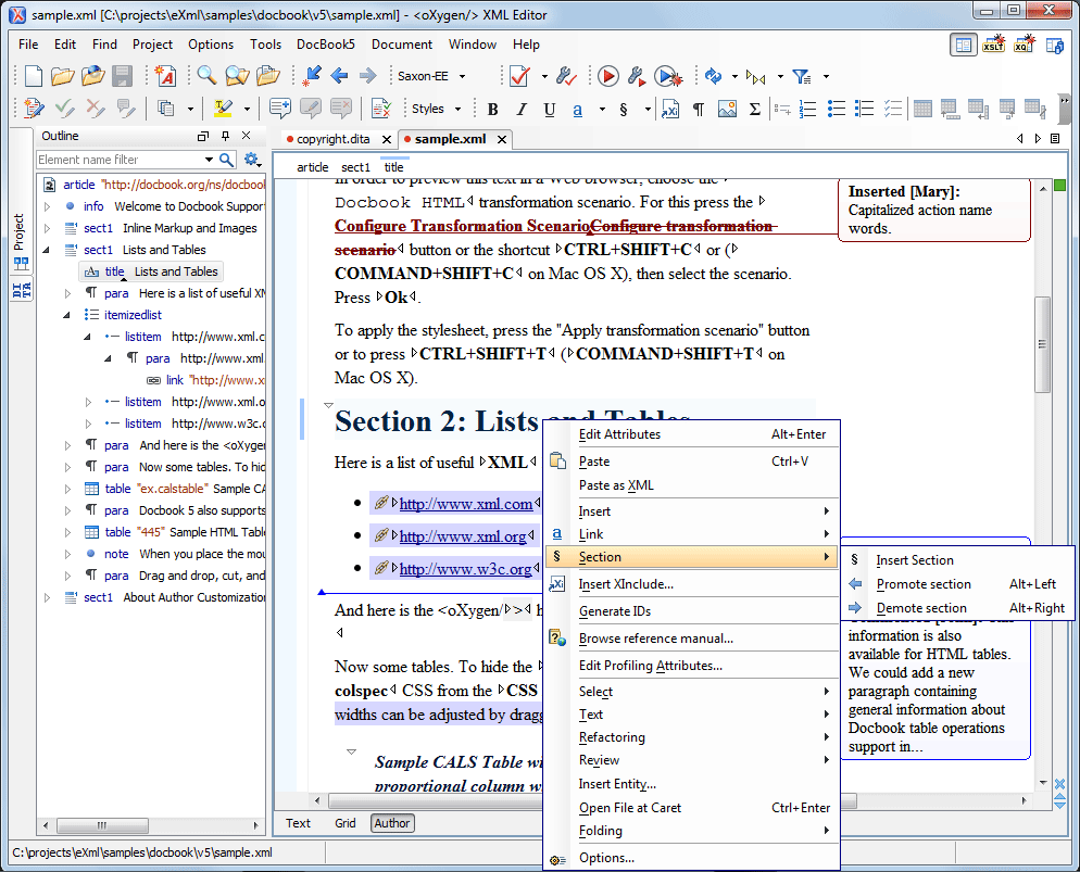 oxygen xml editor review