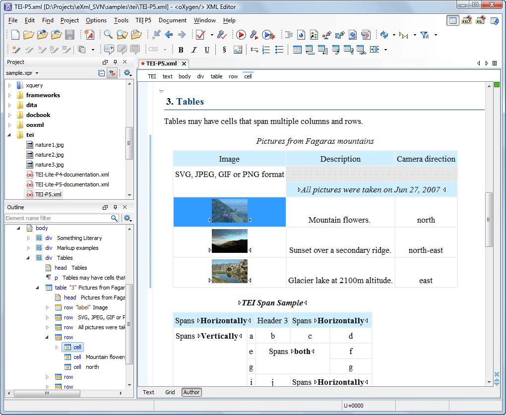 WYSIWYG XML Editor